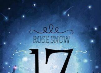 17 ist das erste Buch der Erinnerungen. Eine neue Reihe von Rose Snow die uns mal wieder entführt auf eine Reise, dieses Mal in die Erinnerungen.